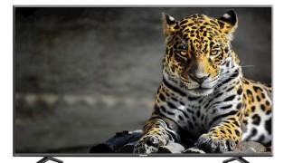 noleggio 55 pollici UHD 4K service video – noleggio – rental